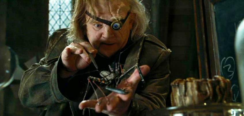 Harry_Potter_Amblypygi